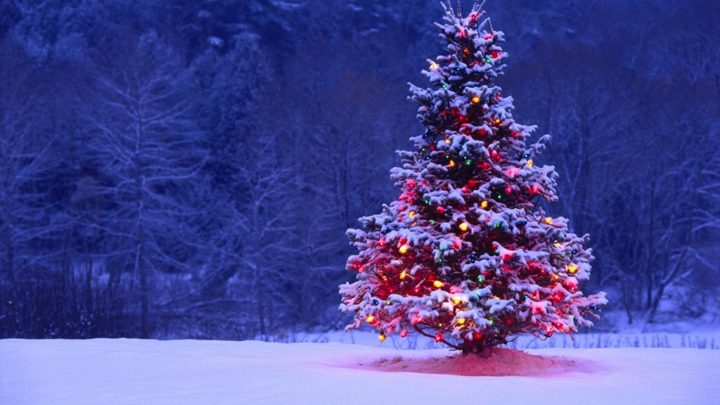 Dry Ice Holiday Schedule